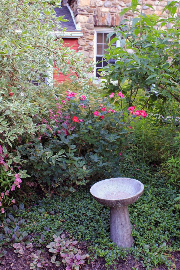 bird-bath-timeless-gardens-ny