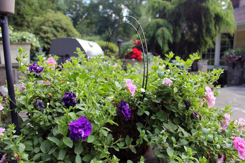 grill-pot-timeless-gardens-ny