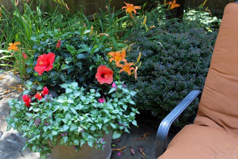 poolside-pots-timeless-gardens-ny