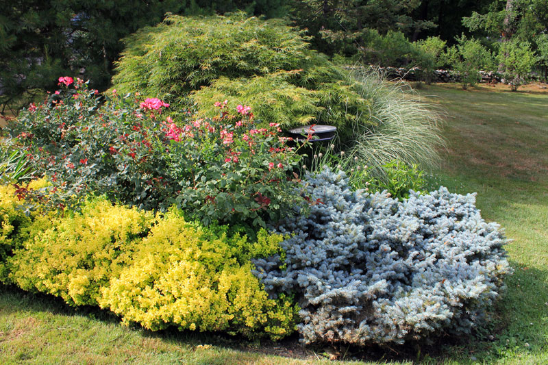 stand-alone-bed-timeless-gardens-ny