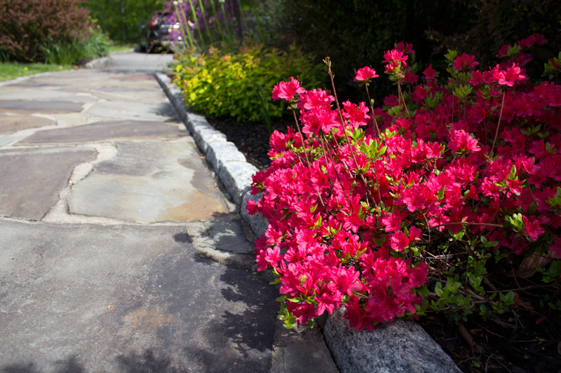 beautify-paths-timeless-gardens-ny