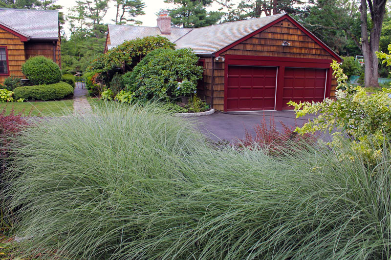 driveway-grasses-timeless-gardens-ny