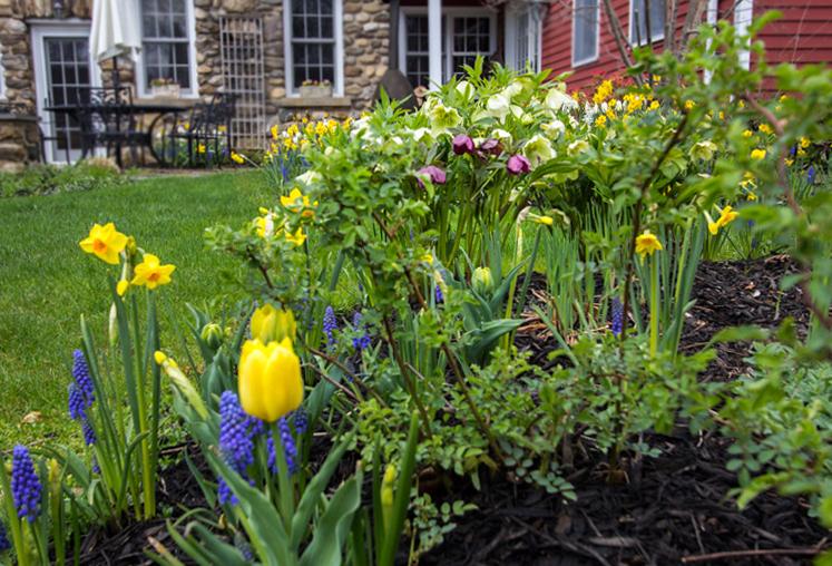 patio-garden-design-timeless-gardens-ny