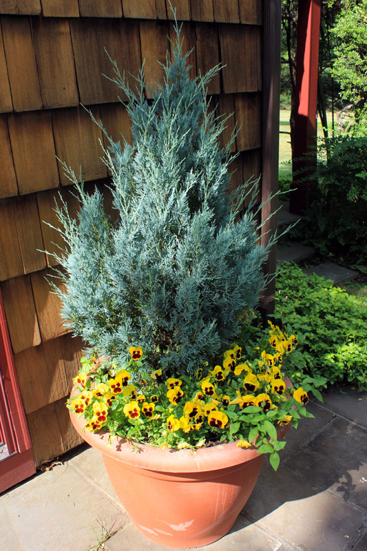 patio-pot-all-seasons-timeless-gardens-ny