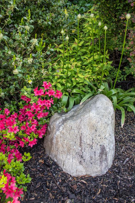 rock-garden-timeless-gardens-ny