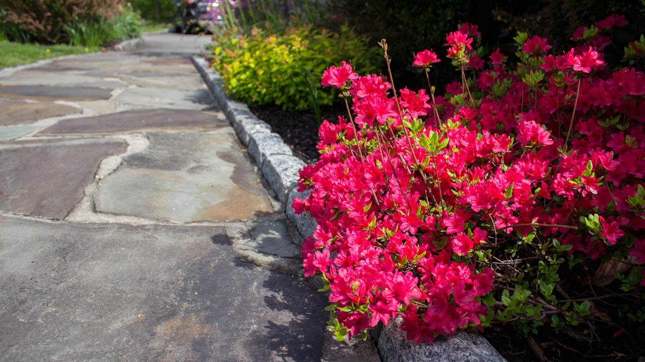 walkway-colors-timeless-gardens-ny