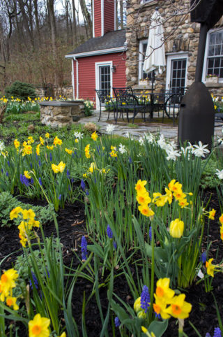 watch-spring-happen-timeless-gardens-ny