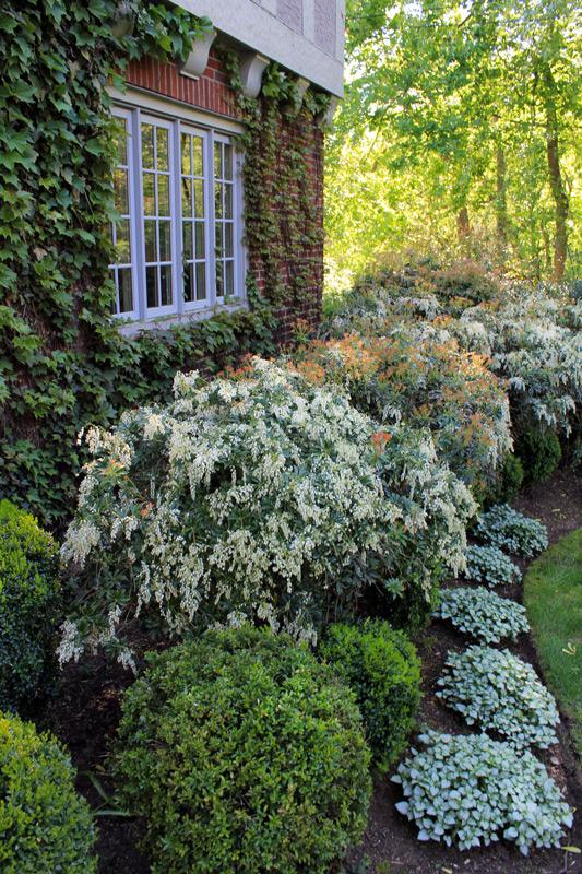 white-landscape-timeless-gardens-ny